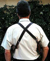 Double harness back view
