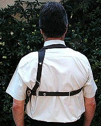single harness rear view